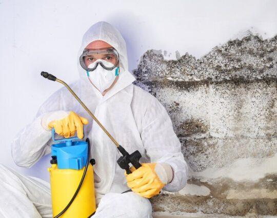 Mold Inspection Services-Palm Beach Gardens Mold Remediation & Water Damage Restoration Services-We offer home restoration services, water damage restoration, mold removal & remediation, water removal, fire and smoke damage services, fire damage restoration, mold remediation inspection, and more.